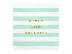 Never Stop Dreaming lautasliina 33x33cm 20kpl/pkt