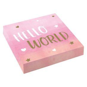 Oh Baby Hello World lautasliinat vaaleanpunainen 16kpl/pkt
