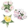 Omenankukka/Ruusu 4-osainen painomuottisetti