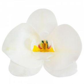 orkidea vohvelikoriste kakkuun
